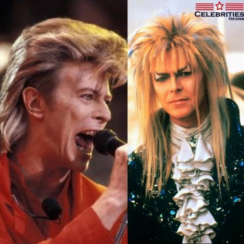 David Bowie Mullet Hairstyle