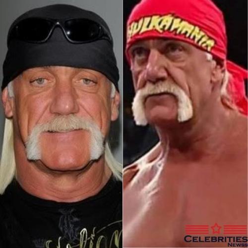 Hulk Hogan Mullet Hairstyle