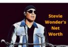Stevie Wonder Net Worth